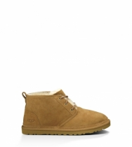 Men's Neumel Chestnut